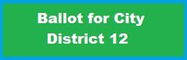 city-ballot-12
