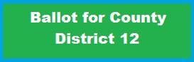 county-ballot-12